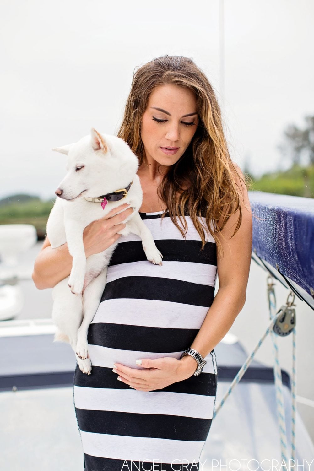 nautical maternity boat dog